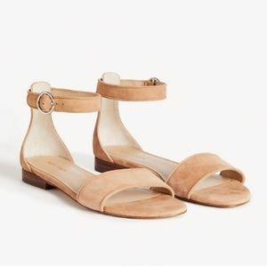 Ann Taylor Aislyn Suede Flat Sandals